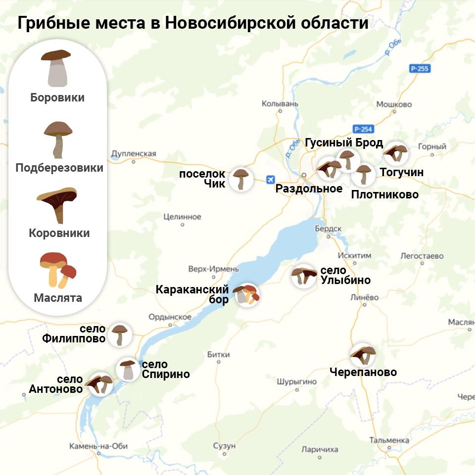 грибные места на карте Новосибирска 2021, фото 1
