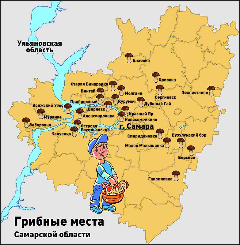 карта грибных мест Самарской области, фото 1