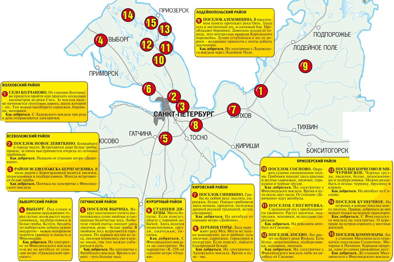 грибная карта региона на фото 1