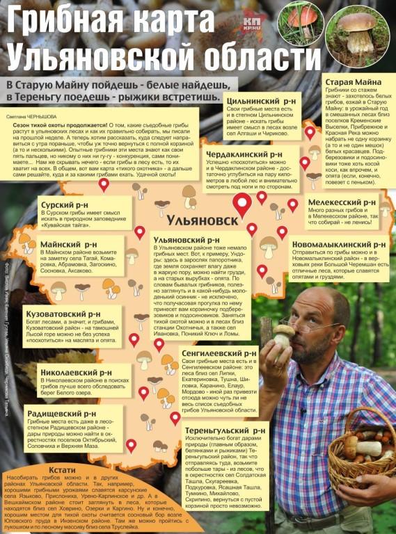 грибные места на карте Ульяновской области, фото 2021