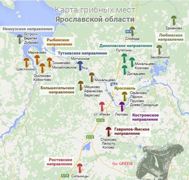 места сбора на грибной карте по фото