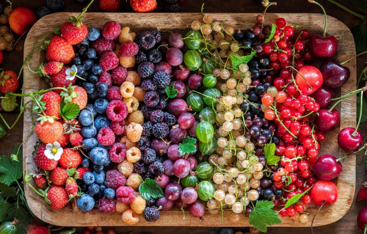 фото сбора урожая ягод 2021 в картинках 3