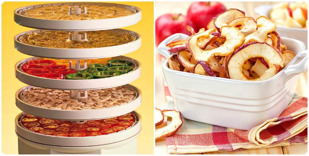 благоприятные дни для заморозки и сушки в сушилке овощей, фруктов, ягод и грибов фото
