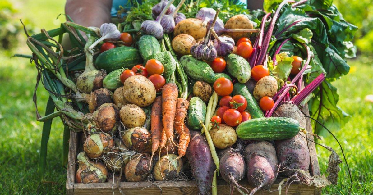 благоприятные дни для уборки урожая, таблица + фото 1