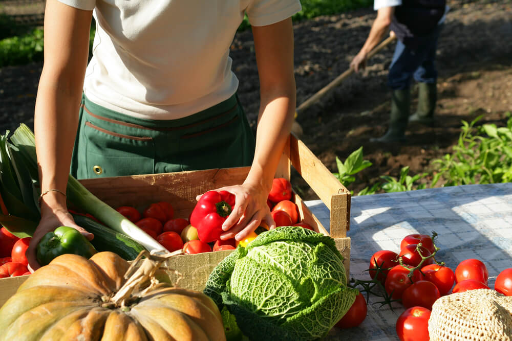 благоприятные дни для уборки урожая, таблица + фото 2