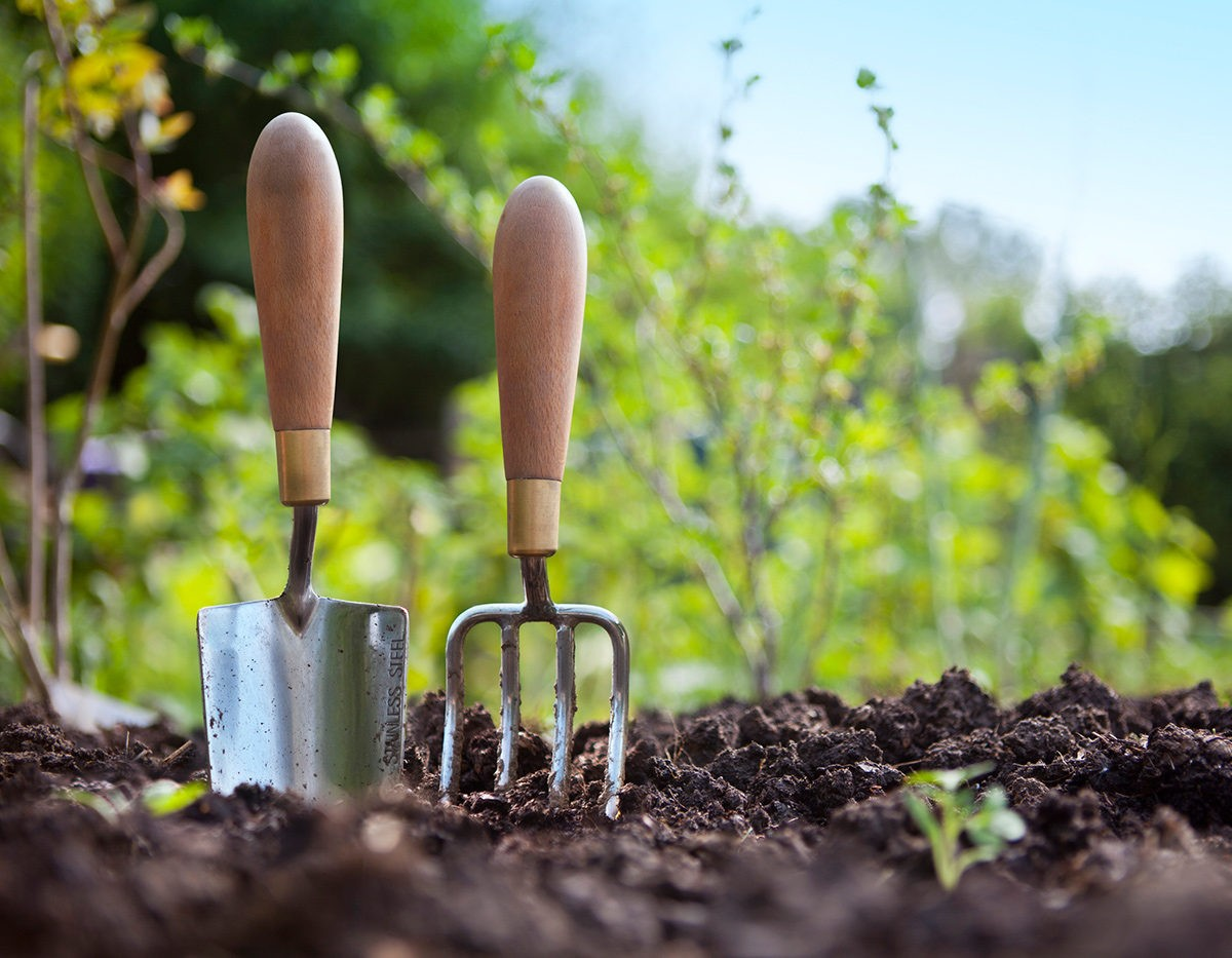 проведение работ в саду и огороде фото