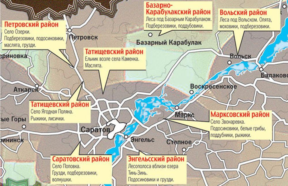 грибные места Саратовской области 2021, карта на фото 1