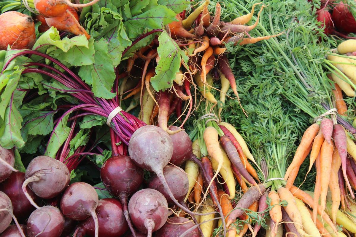 благоприятные дни для уборки свеклы и моркови в 2021 году фото