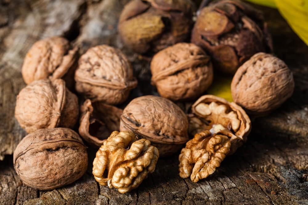 урожая грецкого ореха, сроки уборки фото