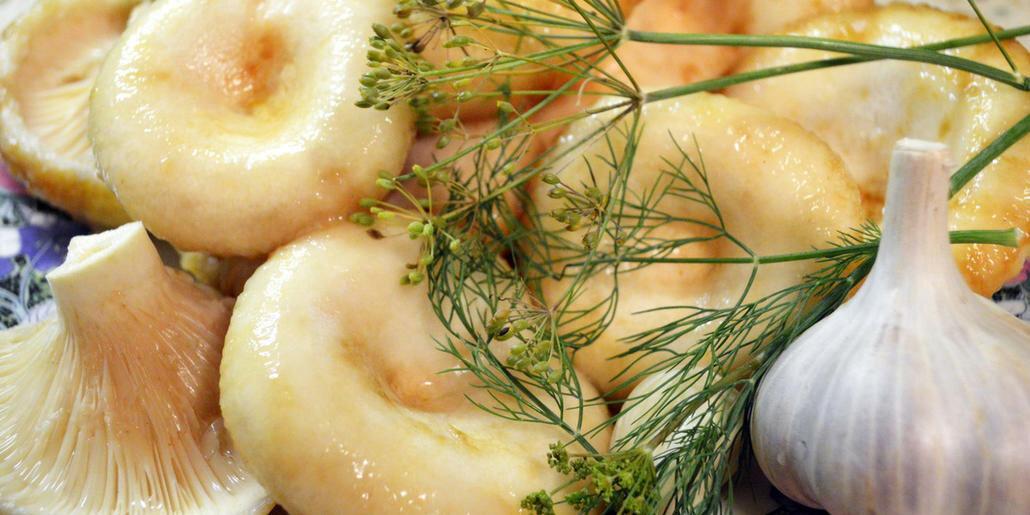 грузди с хреном и ченоком на зиму, рецепт приготовления в банках горячим способом фото