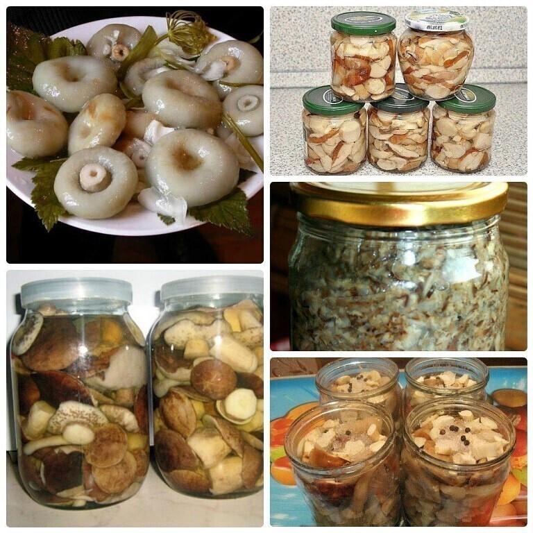 грузди маринованные горячим способом с добавление перца и семян укропа на зиму фото