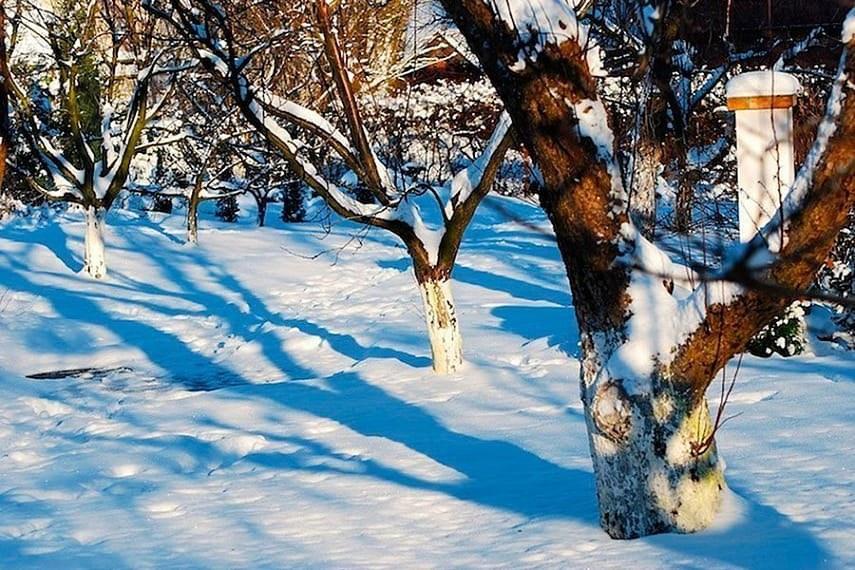 зима и весна фото