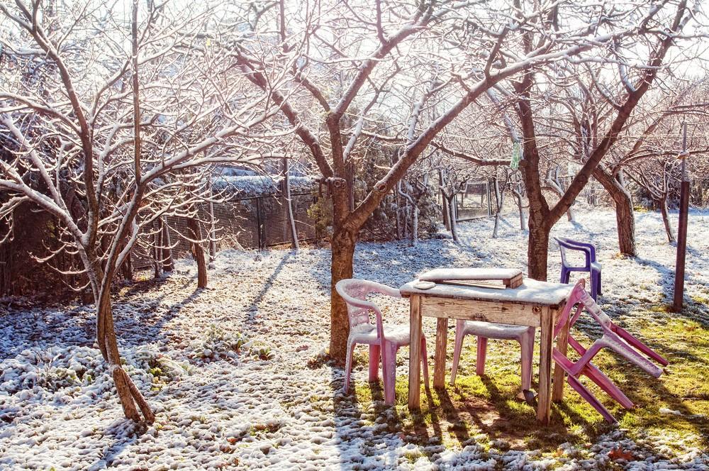 зима и весна фото 2