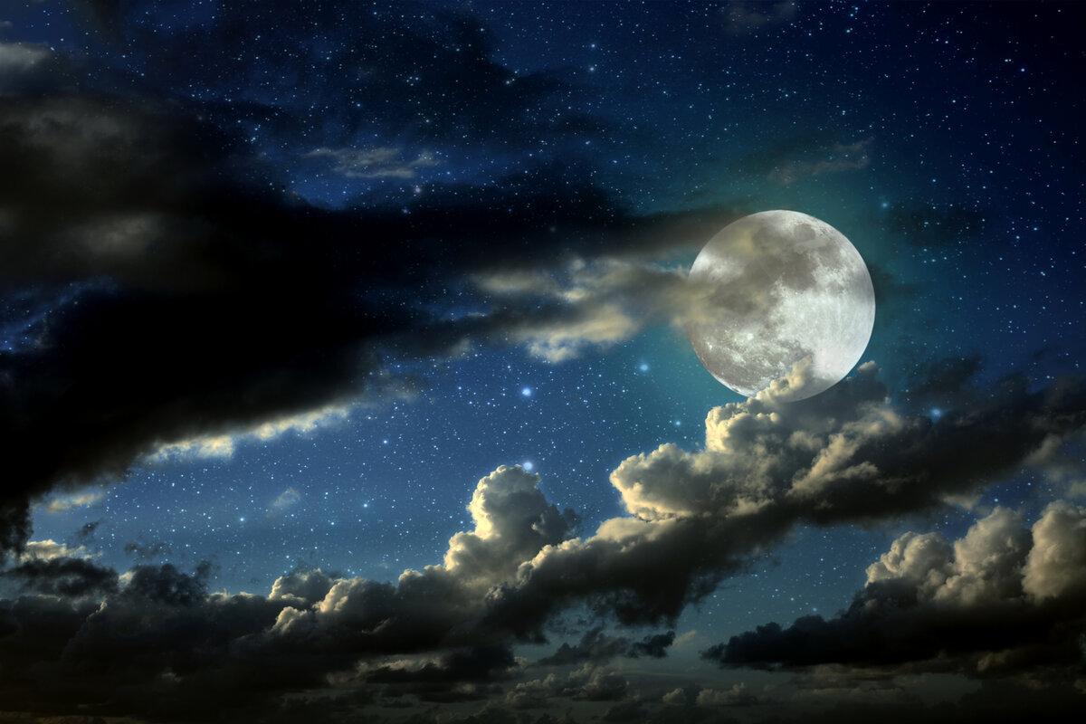 как влияет Луна на растения фото 1