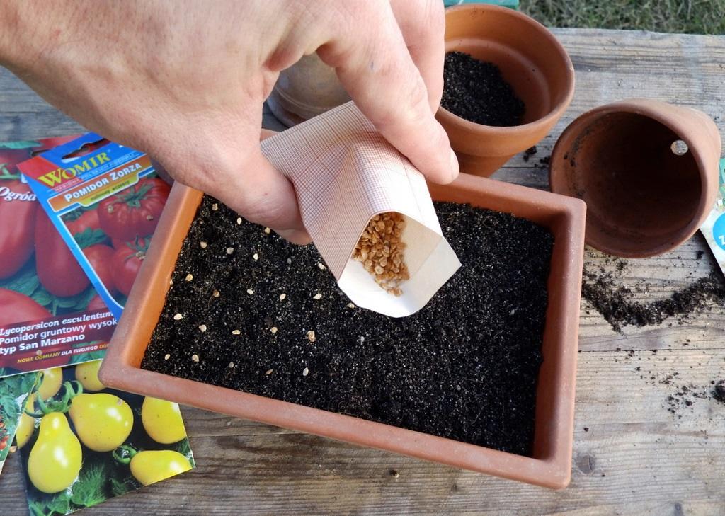 неблагоприятные дни для садово-огородных работ в марте фото