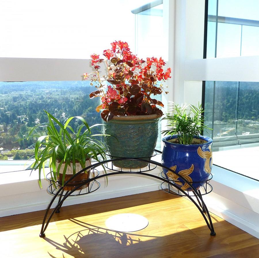 пересадка комнатных растений в марте по Лунному календарю 2021 года: благоприятные, нейтральные и запрещенные дни фото 3