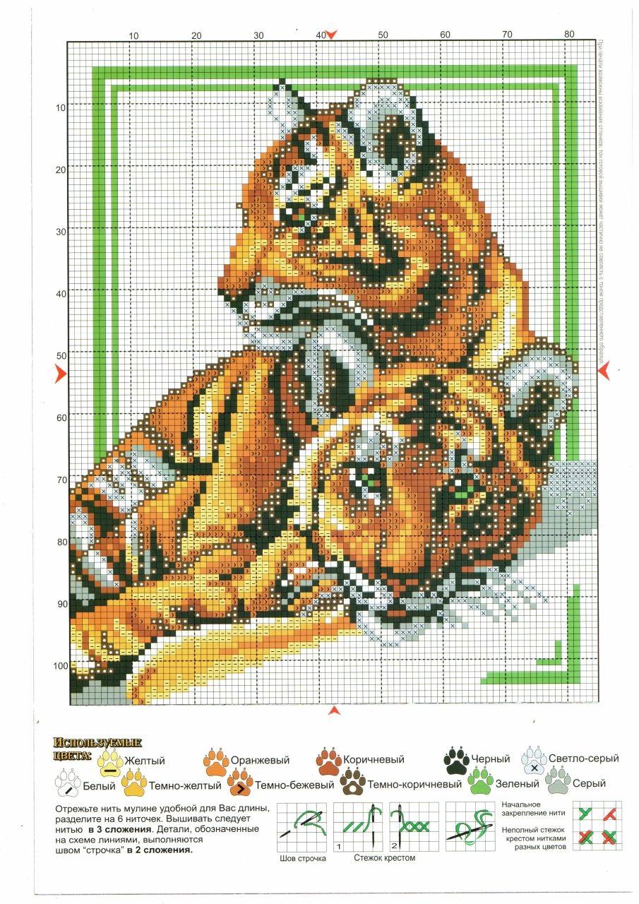 tigr-simvol-goda-2022-foto-12