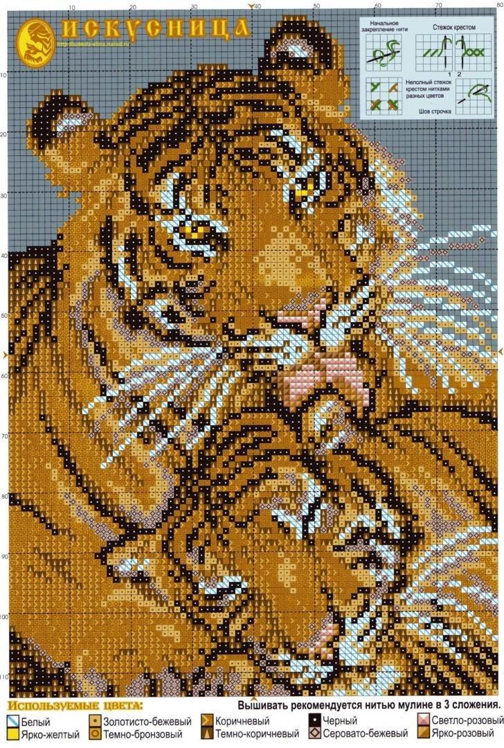 tigr-simvol-goda-2022-foto-16