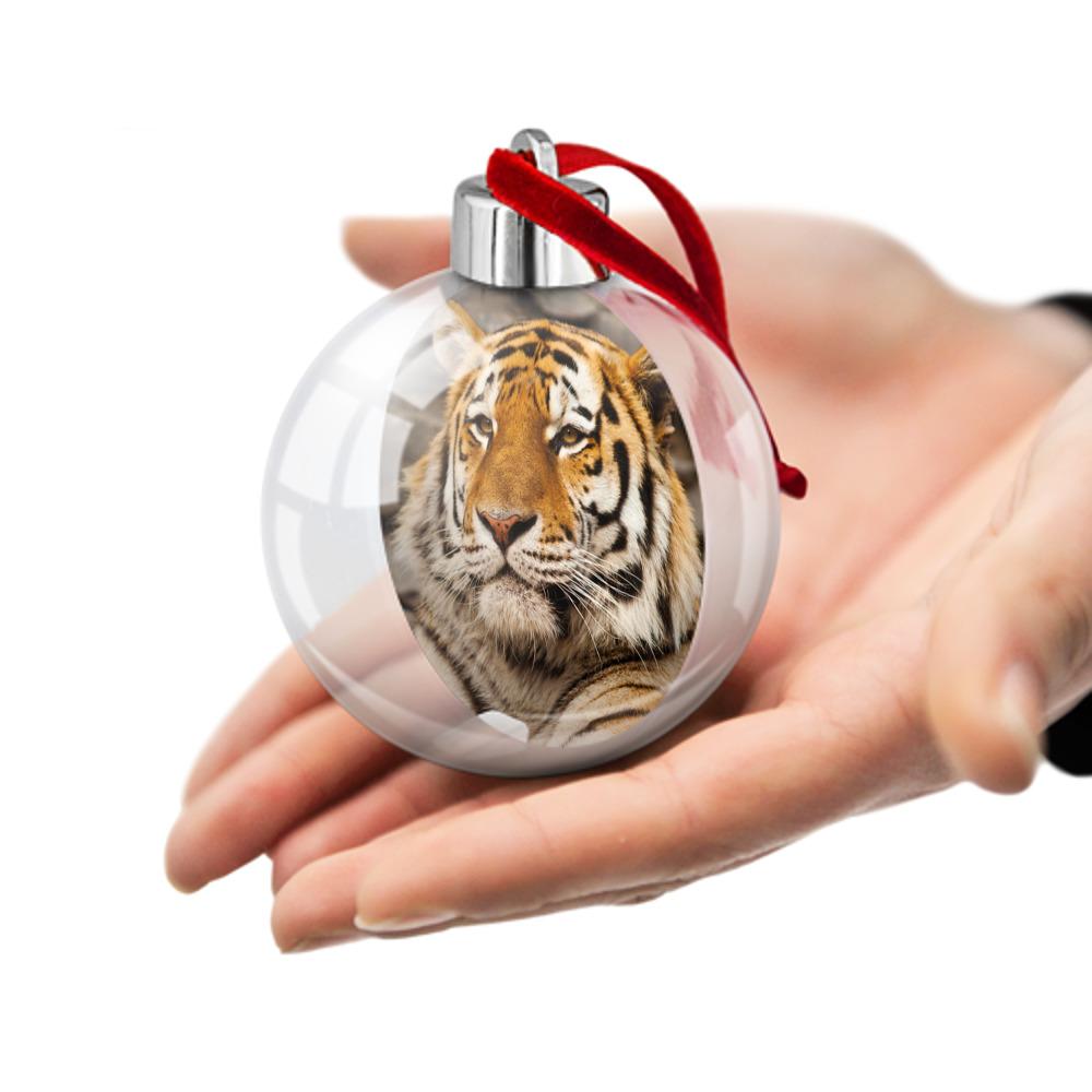 tigr-simvol-goda-2022-foto-20