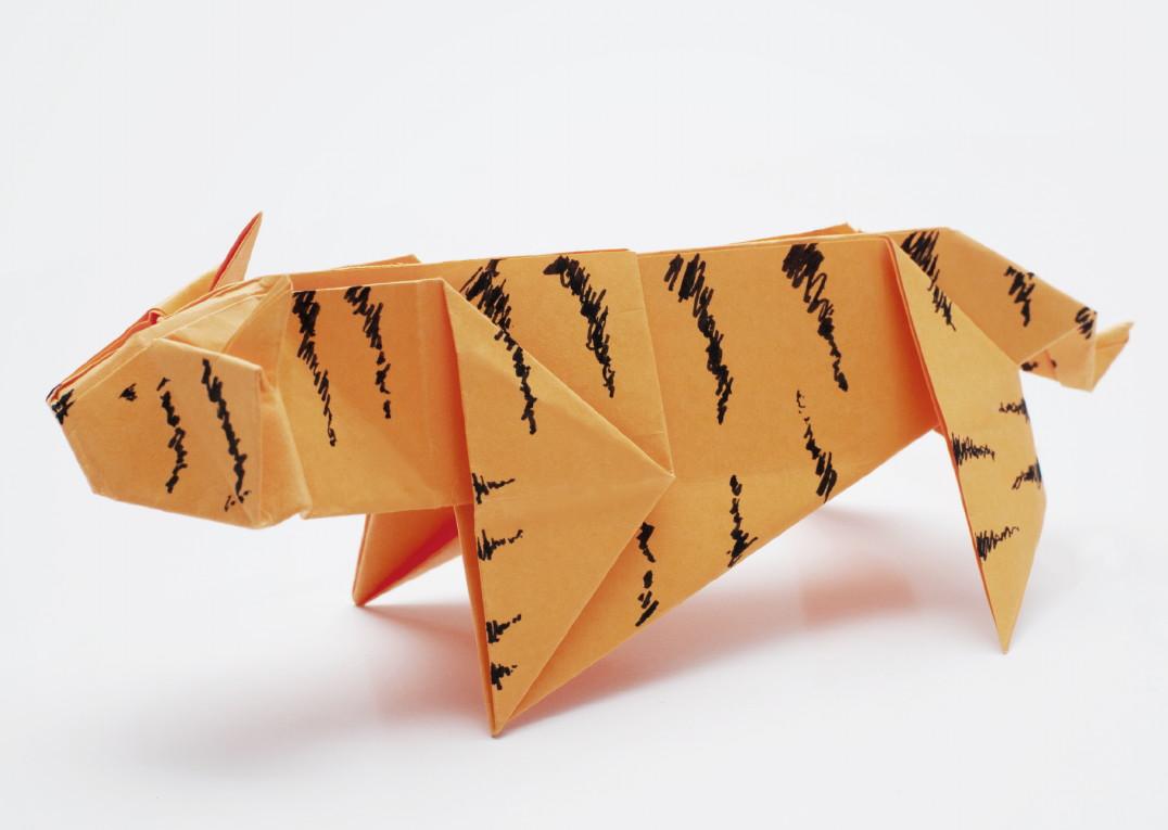 tigr-simvol-goda-2022-foto-41