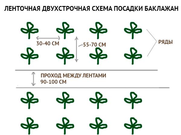 схема посадки + фото 1