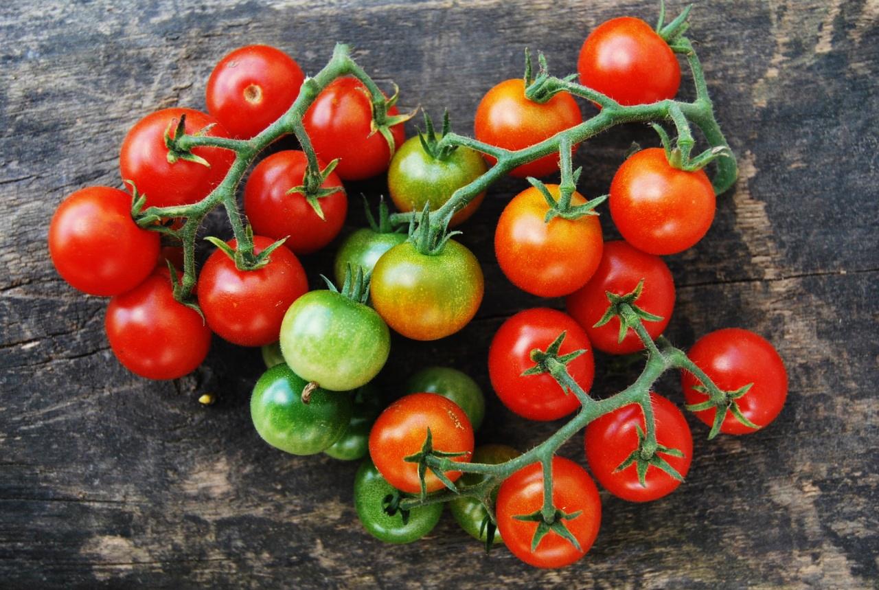 экзотические и редкие сорта томатов от Попенко Валерия Дмитриевича фото 3