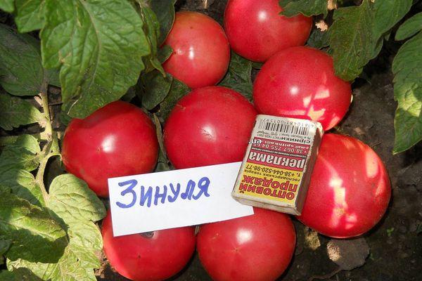 томаты от Ильи Королева фото 3