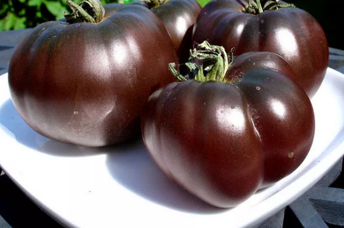 лучшие урожайные сорта для открытого грунта фото 3