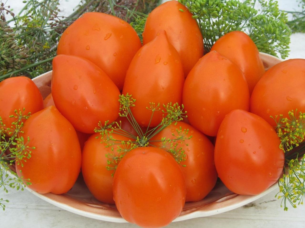 лучшие урожайные сорта для открытого грунта фото 6