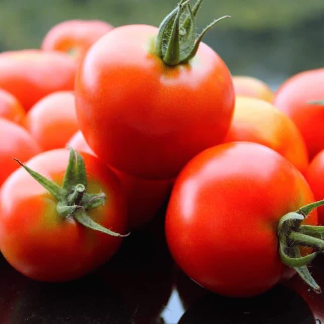 лучшие гибриды томатов F1 2021 года фото 4