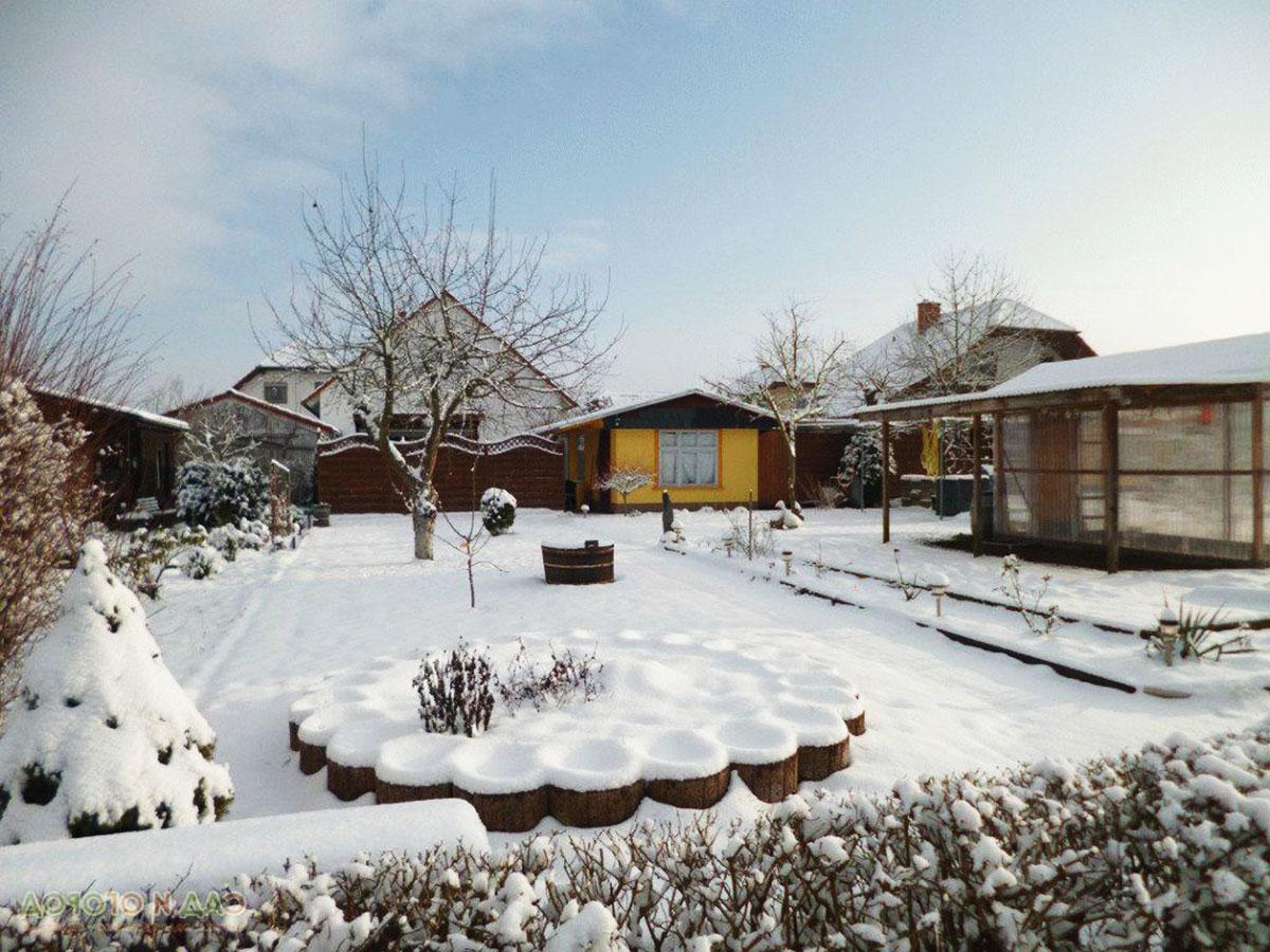 лунный календарь для садовода и огородника на февраль 2021 года: сроки посева и посадки, благоприятные дни фото