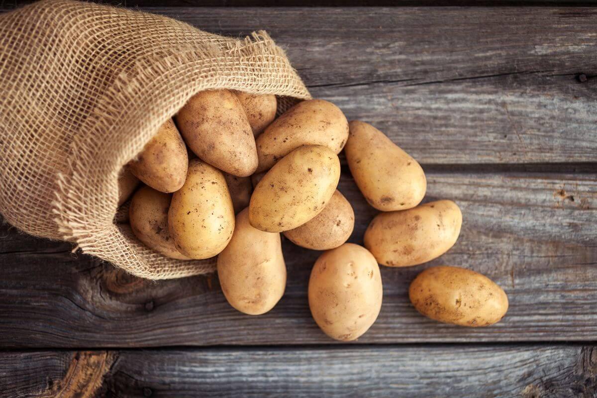 №7 - Картофель фото