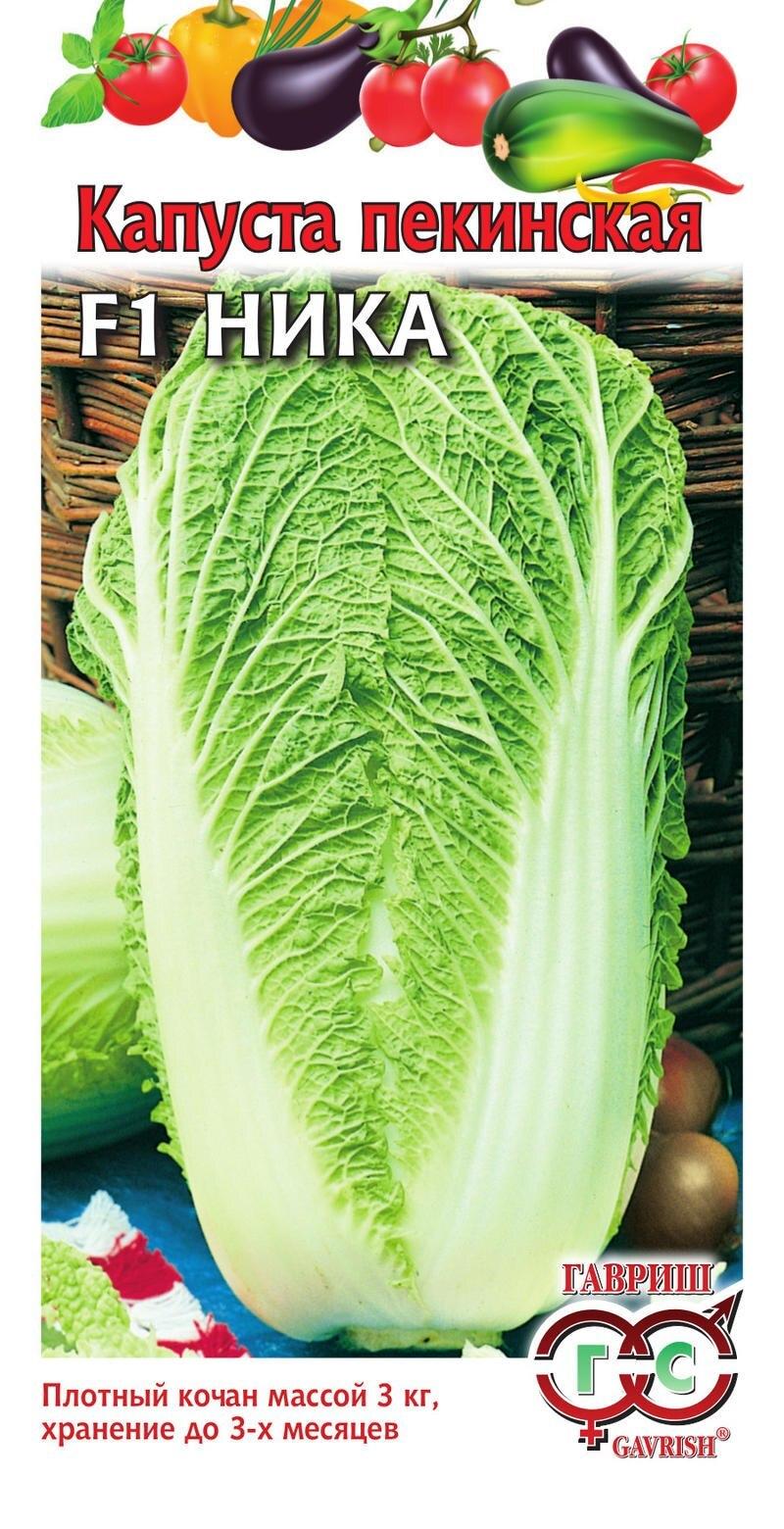 пошаговое выращивание рассады фото
