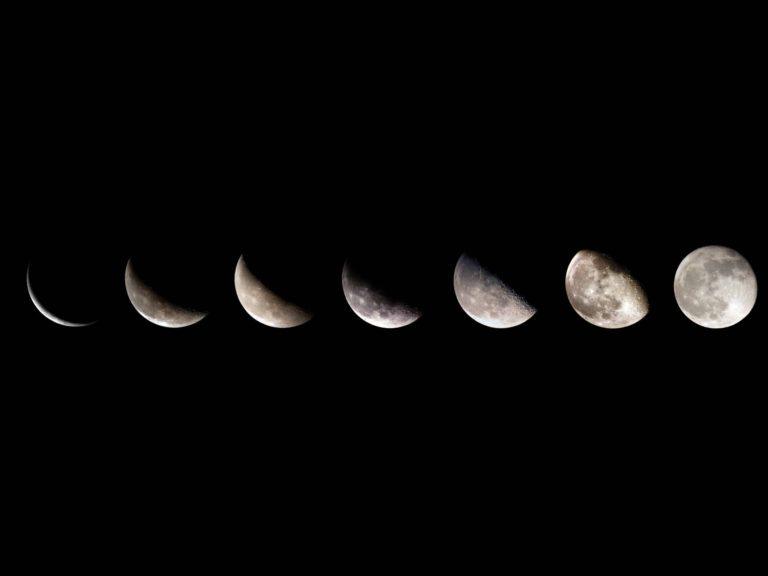 лунный календарь 2021: благоприятные дни для посева и посадки петунии по месяцам фото