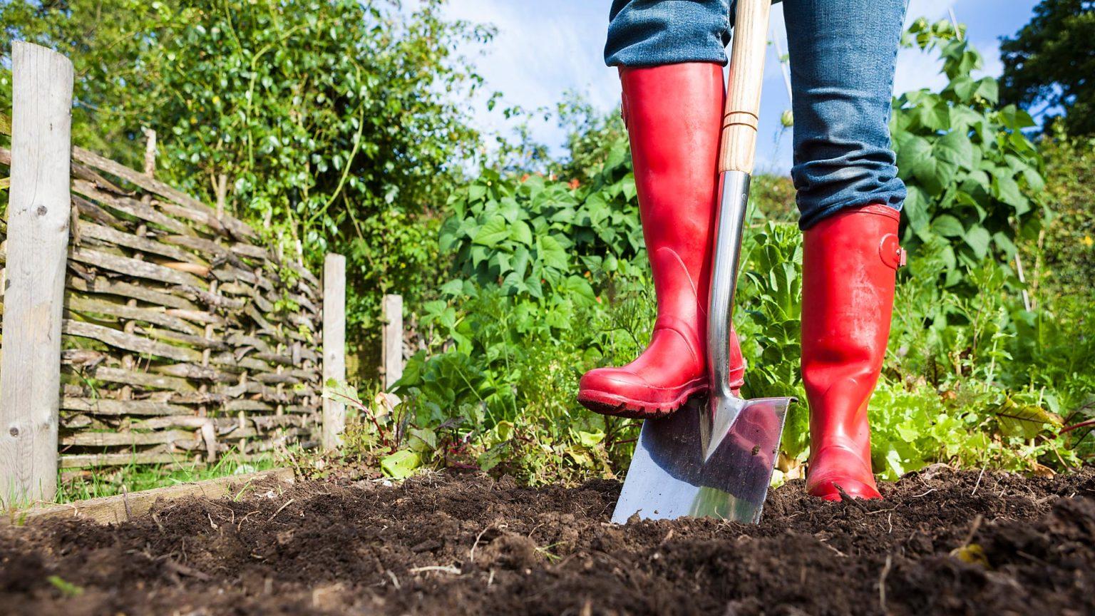 подготовка почвы фото
