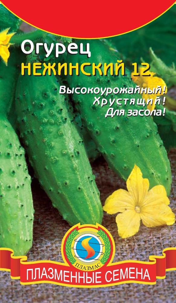 №10 - Нежинский фото