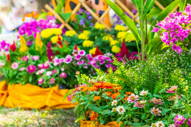 какие цветы сеять на рассаду в марте 2021 года: благоприятные дни по Лунному календарю, сроки по регионам