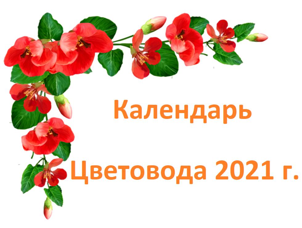 Календарь Лунный цветовода на 2021 год фото