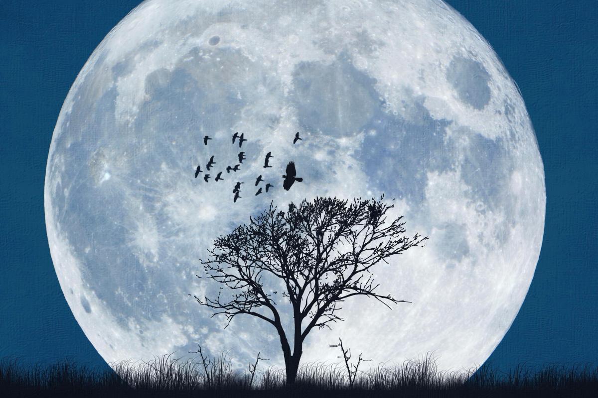 запрещенные дни по Лунному календарю в 2021 году фото 1