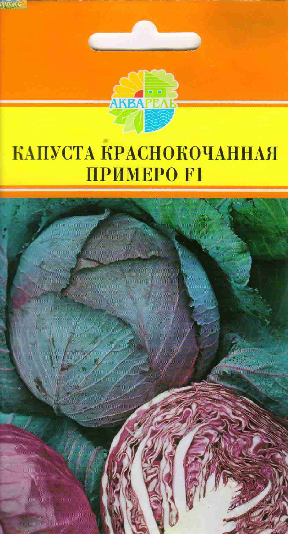 самые лучшие сорта краснокочанной капусты, описание + фото