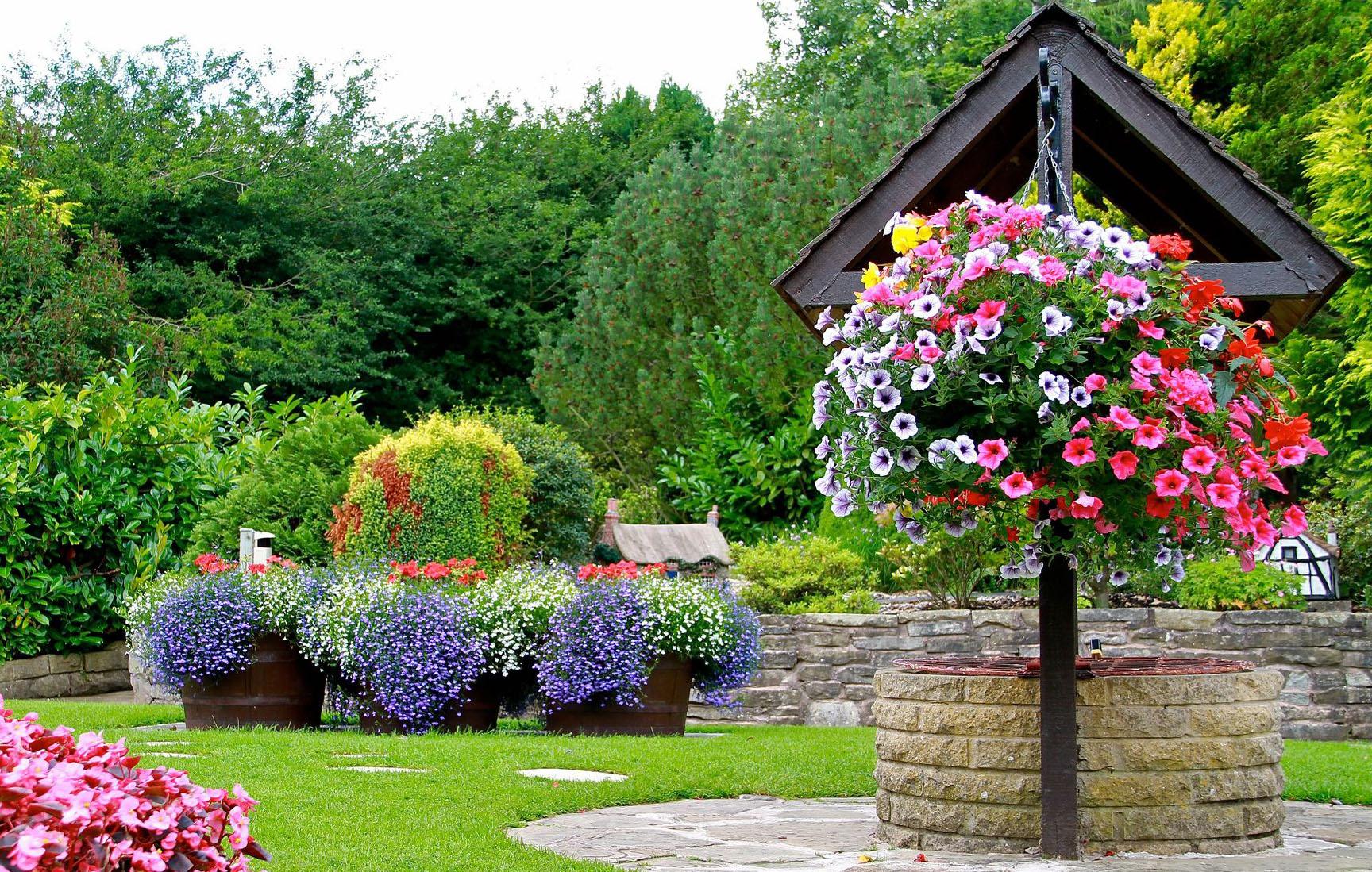 какие цветы сеять в апреле 2021 года на рассаду и в открытый грунт: сроки посадки фото