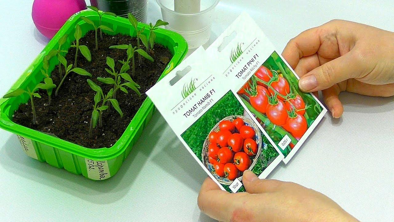 самые благоприятные дни для посева томатов на рассаду в апреле 2021 года по Лунному календарю фото 1